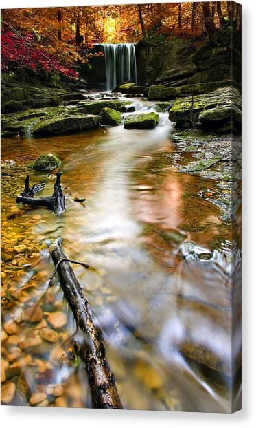Wilderness Canvas Print - Autumnal Waterfall by Meirion Matthias