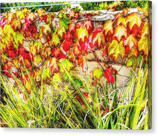 Autumn's Kiss Canvas Print