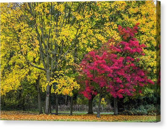 Autumn's Peak Canvas Print