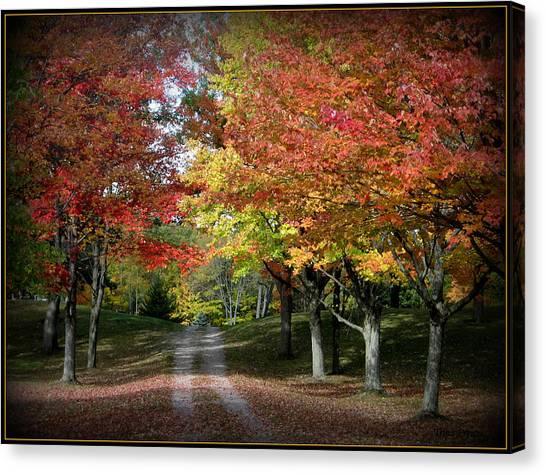 Autumn's Walk Canvas Print by Trina Prenzi