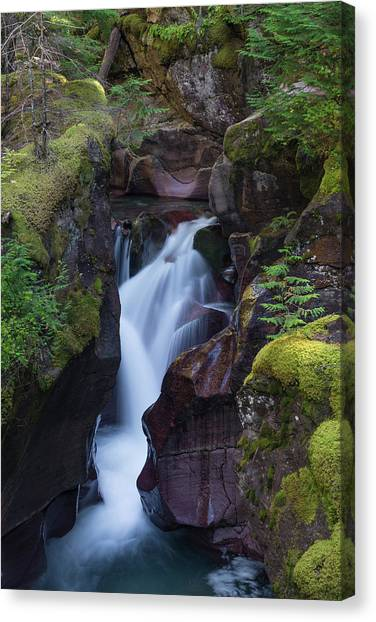 Canvas Print featuring the photograph Avalanche Gorge 3 by Gary Lengyel