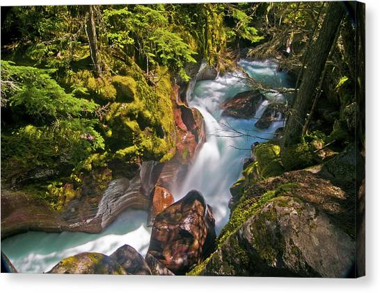 Canvas Print featuring the photograph Avalanche Gorge by Gary Lengyel