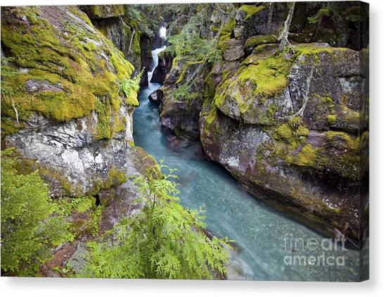 Canvas Print featuring the photograph Avalanche Gorge In Glacier National Park by Bryan Mullennix