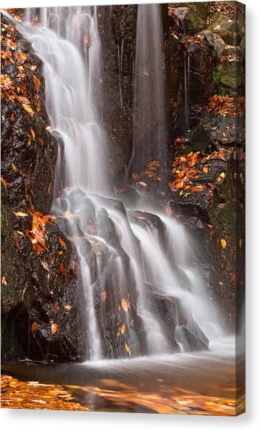Avalon Falls Canvas Print