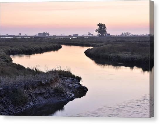 Twilight Marshland Canvas Print