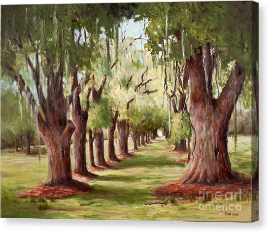 Avenue Of Oaks Iv  Canvas Print