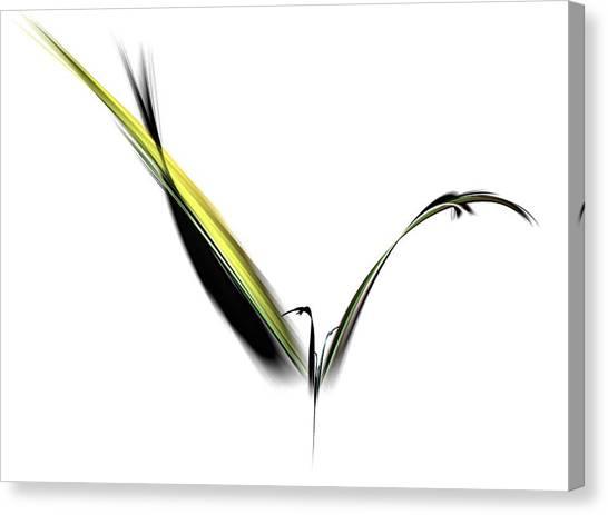 Avian Zen - Fractal Art Canvas Print