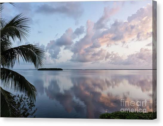 Awakening At Sunrise Canvas Print