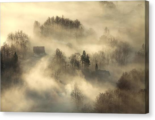 Foggy Forests Canvas Print - Awakening by Izabela Laszewska-mitrega