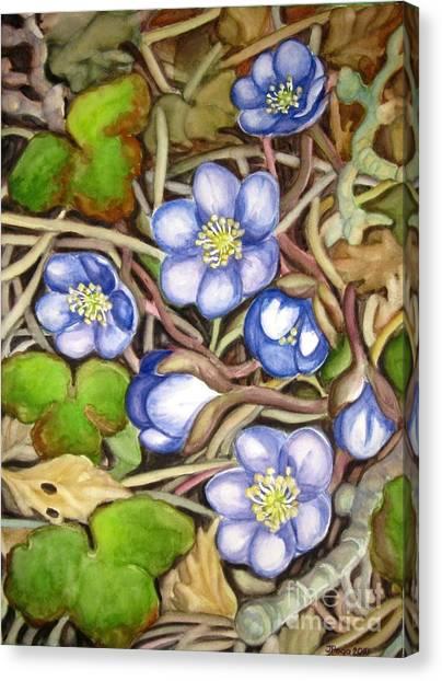 Awakening Of The Wild Anemone  Canvas Print