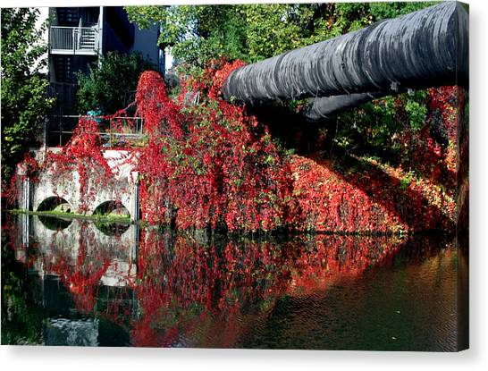 Away To The Red Canvas Print by Jez C Self