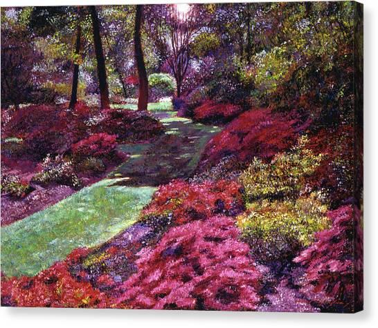 Azalea Park Canvas Print by David Lloyd Glover