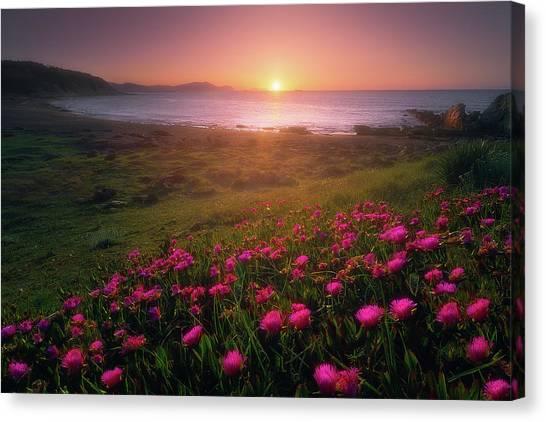 Azkorri In Springtime Canvas Print