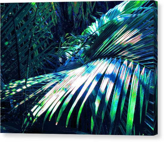 Azul Shimmer Canvas Print by Scott K Wimer