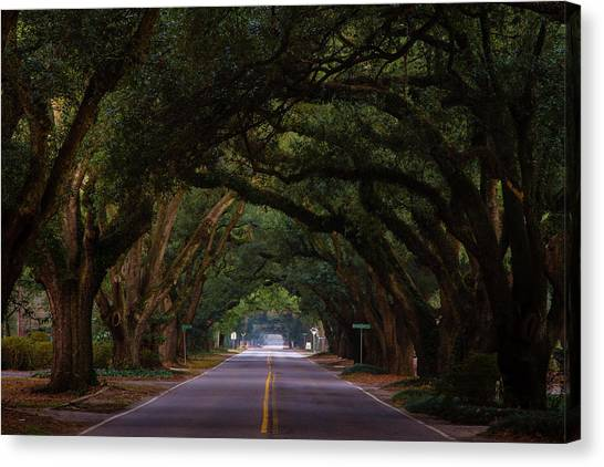 Boundary Ave Aiken Sc 6 Canvas Print