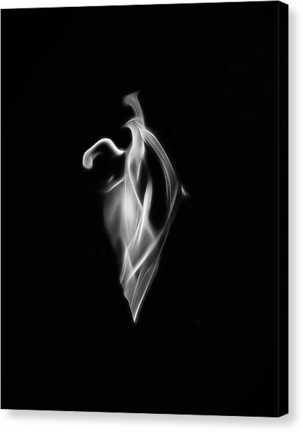 B/w Flame 7092 Canvas Print