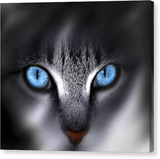 Nose Canvas Print - Baby Blues by Cecil Fuselier