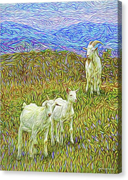 Baby Goats Of The New Dawn Canvas Print