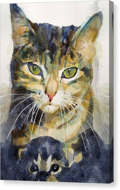 Kittens Canvas Print - Baby I Love You  by Paul Lovering