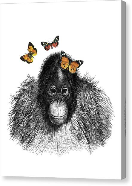 Black And White Canvas Print - Baby Monkey With Orange Butterflies by Madame Memento