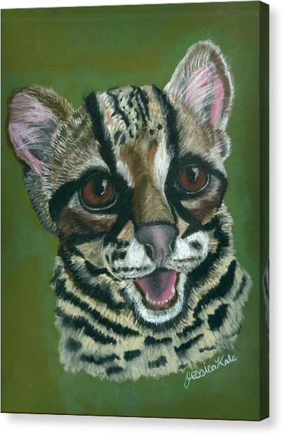 Baby Ocelot Canvas Print by Jessica Kale