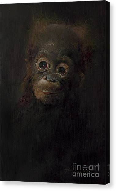 Orangutans Canvas Print - Baby Orangutan  One by Odile Kidd