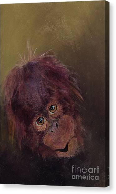 Orangutans Canvas Print - baby orangutan Two by Odile Kidd