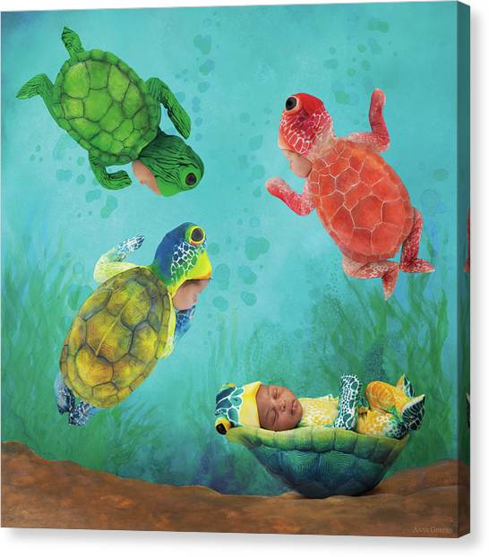 Turtles Canvas Print - Baby Turtles by Anne Geddes