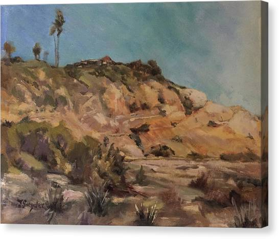 Back Bay Cliff Canvas Print