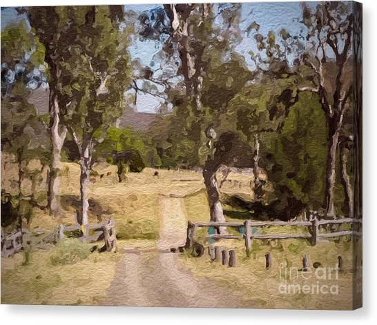 Back Country Farm Track Canvas Print