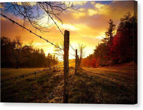 Back Light Canvas Print