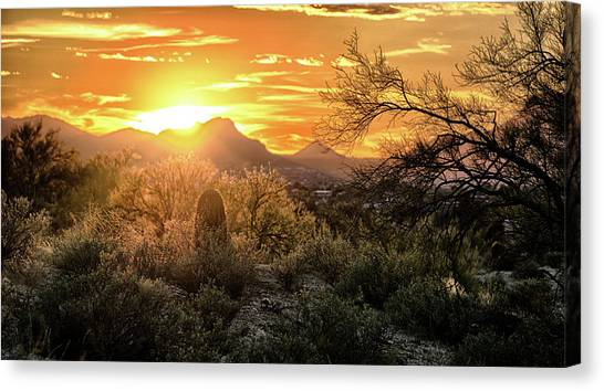 Back Lit Canvas Print