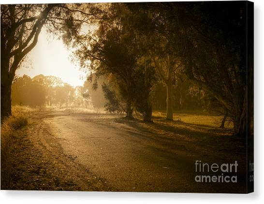 Canvas Print featuring the photograph Back Road Morning by Ray Warren