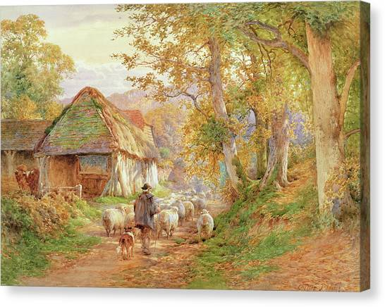 Bucolic Canvas Print - Back To The Fold by Charles James Adams