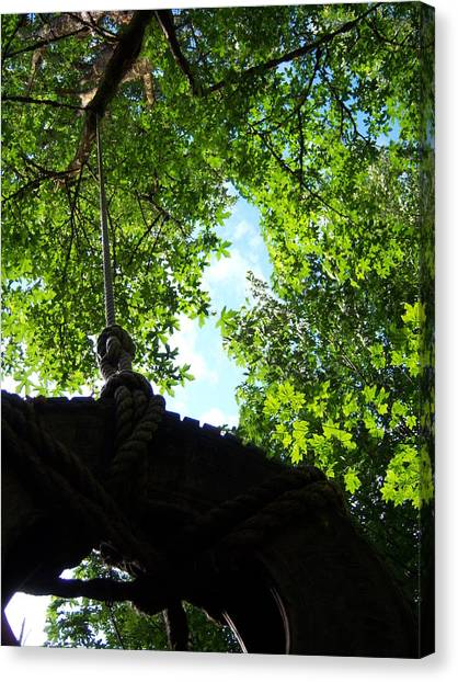 Back Under The Tire Swing Canvas Print by Ken Day