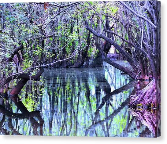 Iced Tea Canvas Print - Back Waters by Laura Ragland