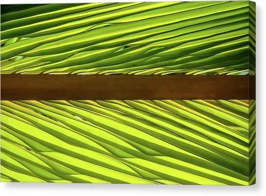 Palm West Canvas Print