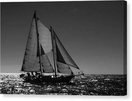 Backlit Schooner 2 Canvas Print