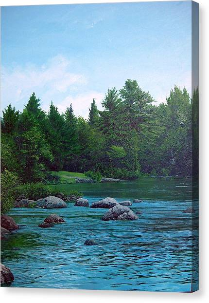 Backyard Canvas Print by Richard Ong