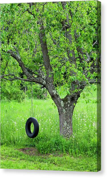 Tire Swing Canvas Print   Backyard Spring Swing By Alan L Graham