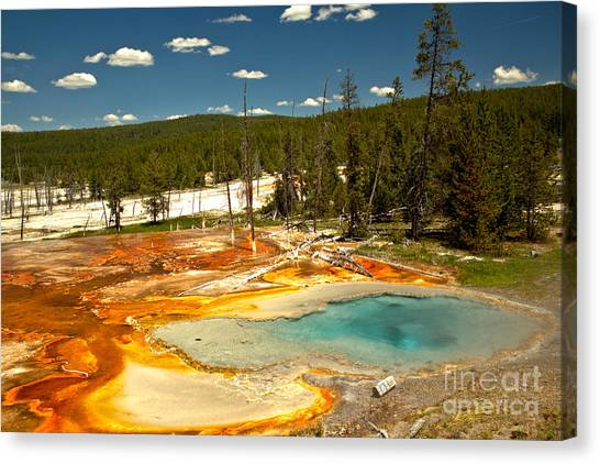 Yellowstone Caldera Canvas Print - Bacterial Mats At Firehole Spring by Adam Jewell