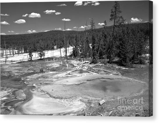 Yellowstone Caldera Canvas Print - Bacterial Mats At Firehole Spring Black And White by Adam Jewell