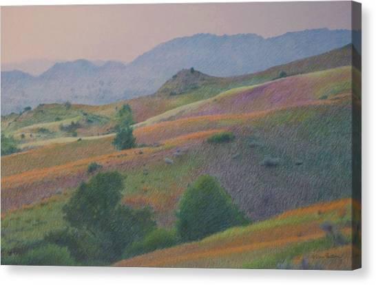 Badlands In July Canvas Print