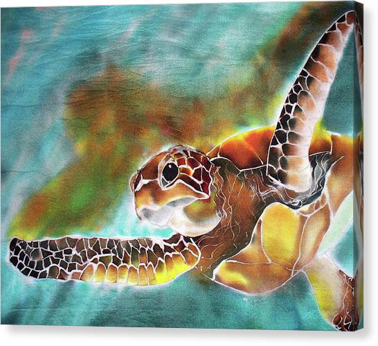 Bahamian Turtle Dove Canvas Print