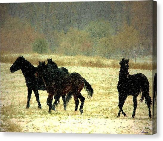 Bailando De Los Caballos En Viento Y Nieve Canvas Print by Anastasia Savage Ealy