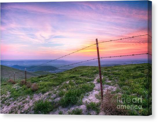 Bakersfield Hills  Canvas Print