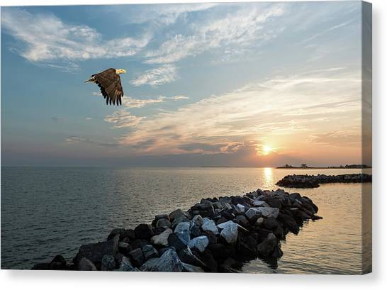 Bald Eagle Flying Over A Jetty At Sunset Canvas Print