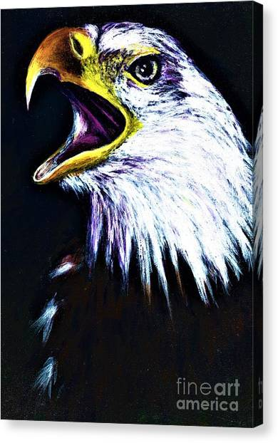 Bald Eagle - Francis -audubon Canvas Print