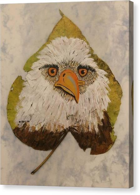 Bald Eagle Front View Canvas Print