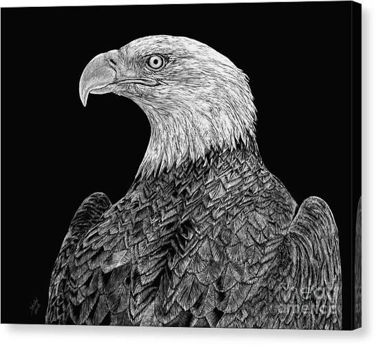 Bald Eagle Scratchboard Canvas Print